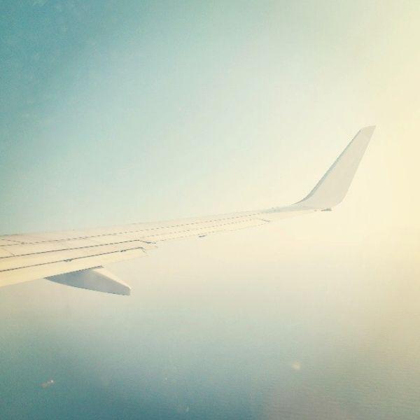 Ala Avión